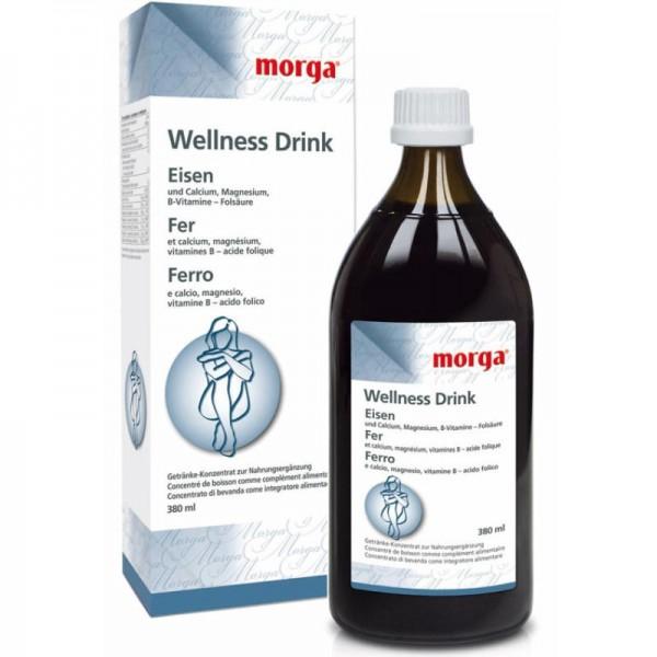 Eisen Wellness Drink, 380ml - Morga